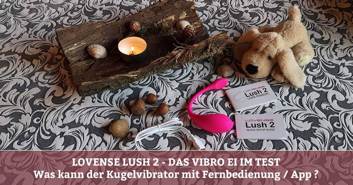 Lovense Lush 2 Test - Vibrator mit Fernbedienung - Kugelvibrator mit App